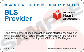New BLS Renewal Card